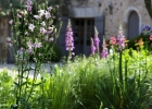 la_frelonniere_vendee_bed_and_breakfast